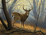 Andersen Deer Wildlife Indoor Wiper Mat