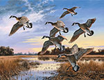 Andersen Geese Wildlife Indoor Wiper Graphic Mat